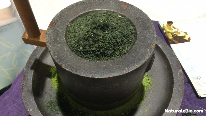 tè matcha macinato a pietra
