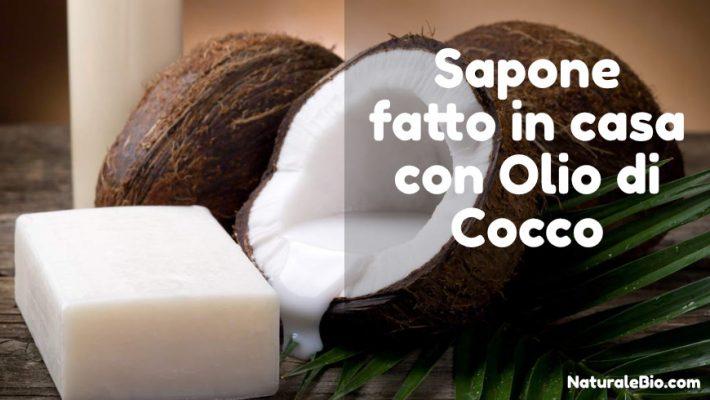 sapone fatto in casa con olio di cocco