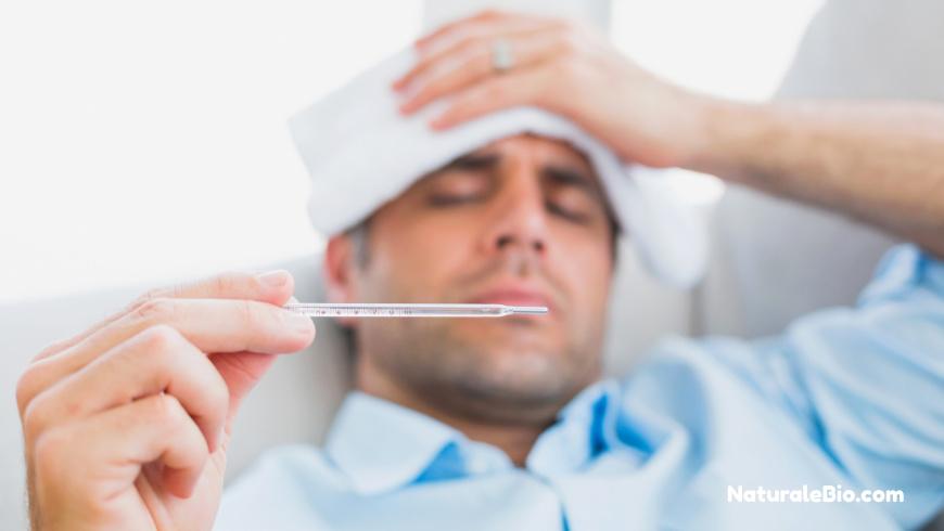 Miele di Manuka influenza