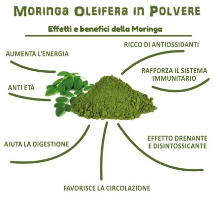 Moringa Oleifera in Polvere - Effetti e Benefici