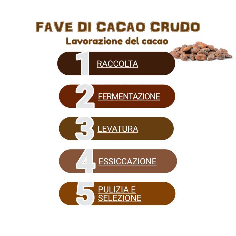 Lavorazione delle fave di cacao crudo