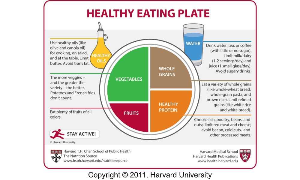 Dieta del piatto unico, cosa mangiare (secondo Harvard)
